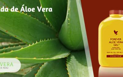 Forever Aloe Vera Gel Chiclayo